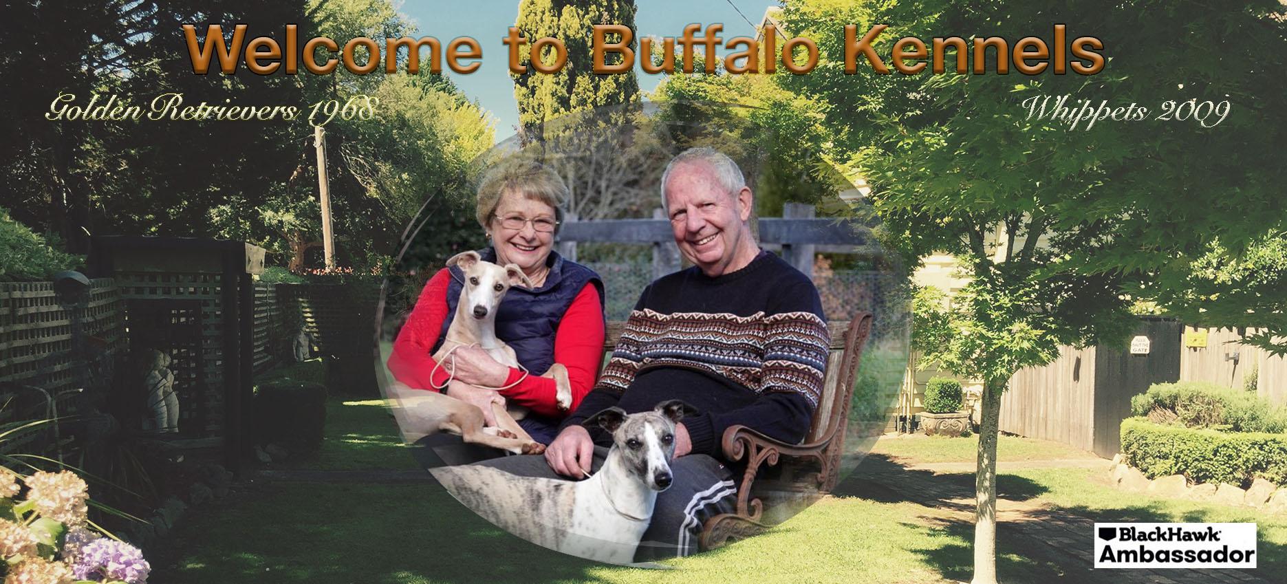 Buffalo Kennels